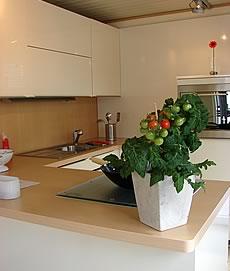 container verkauf k chencontainer b rocontainer mieten. Black Bedroom Furniture Sets. Home Design Ideas